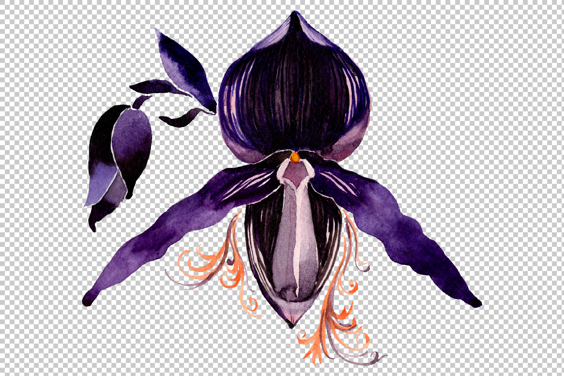 Orchid black Watercolor png example image 2