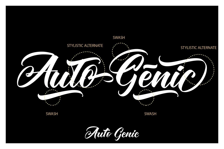 Autogenic | Brush Lettring Font example image 8