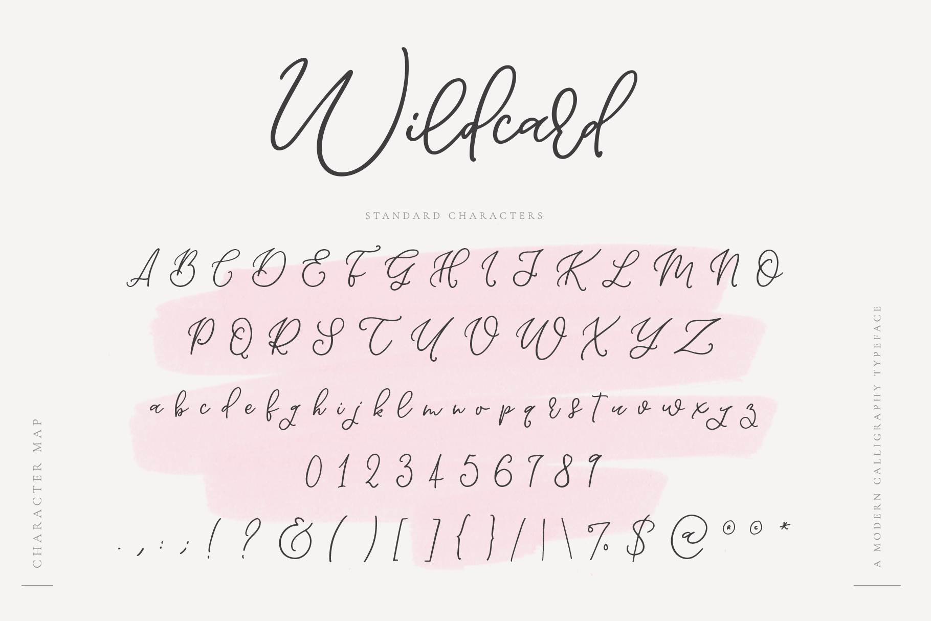 Wildcard | A Modern Calligraphy Script example image 11