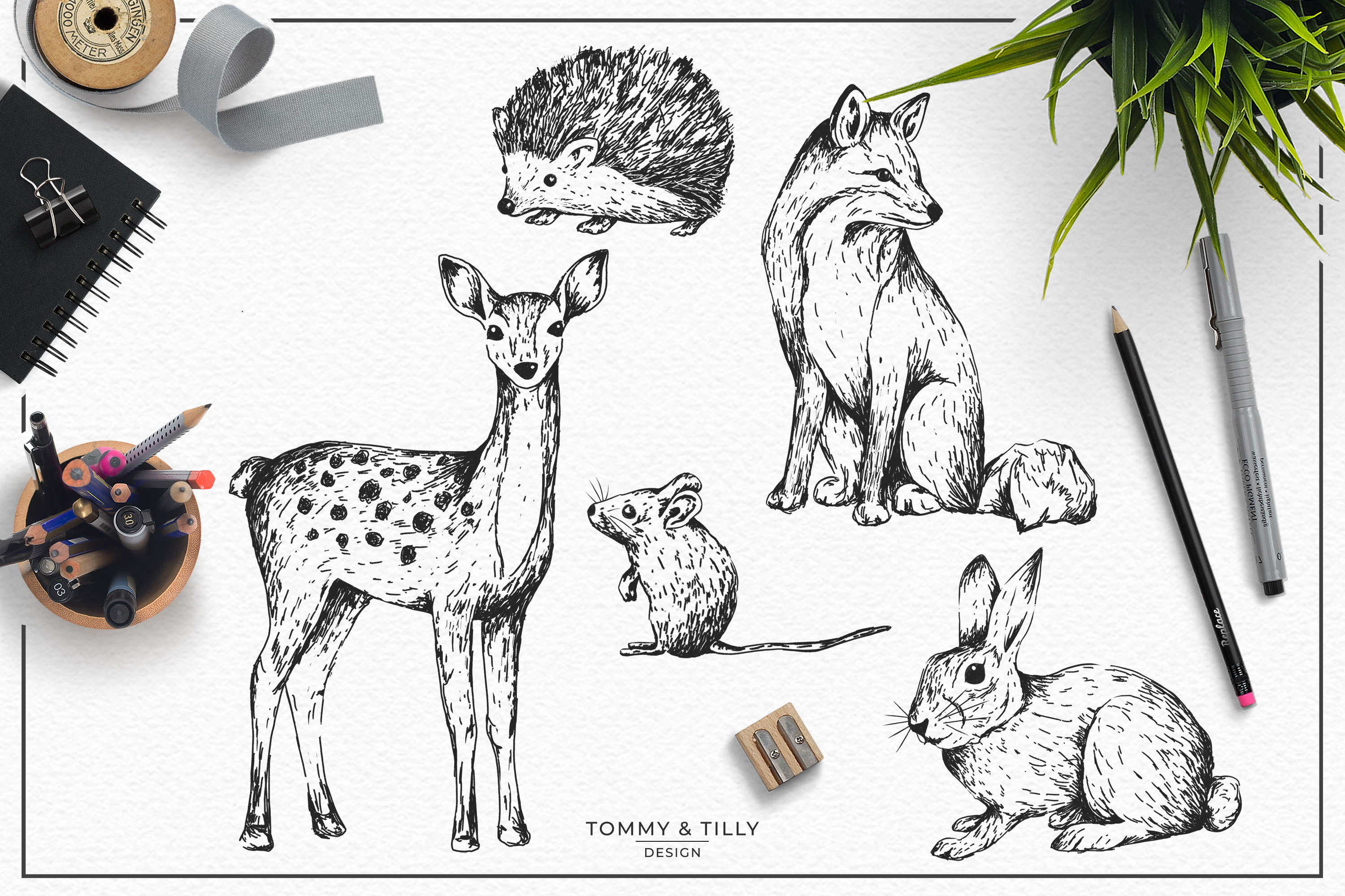 Hand Drawn Woodland Animals Bundle | High Quality Clipart | example image 2