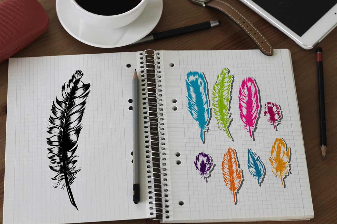 8 Hand Drawn Feathers set. example image 3