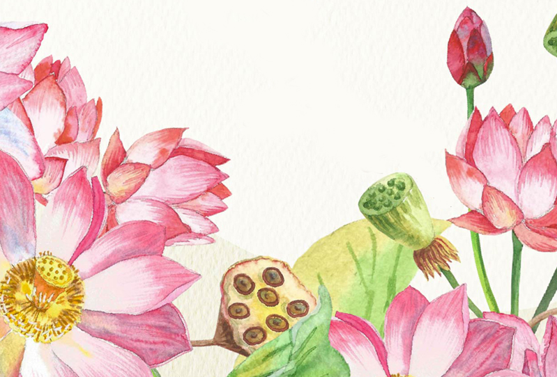 Lotus Flowers. Bouquets and Wreaths example image 3