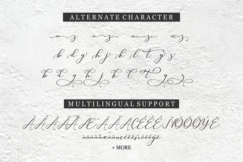 Hilland | Signature Font example image 12