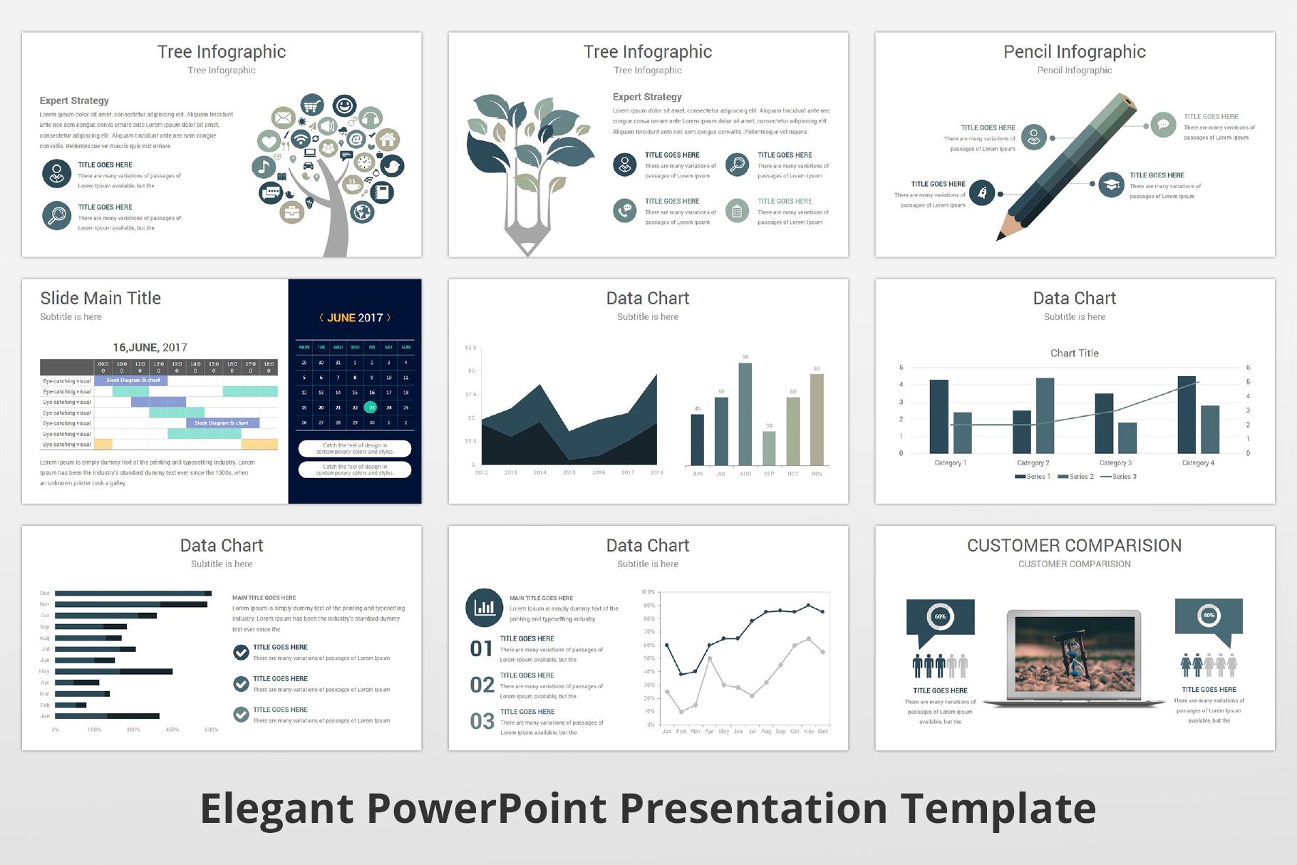 Elegant multipurpose PowerPoint Presentation Template example image 14