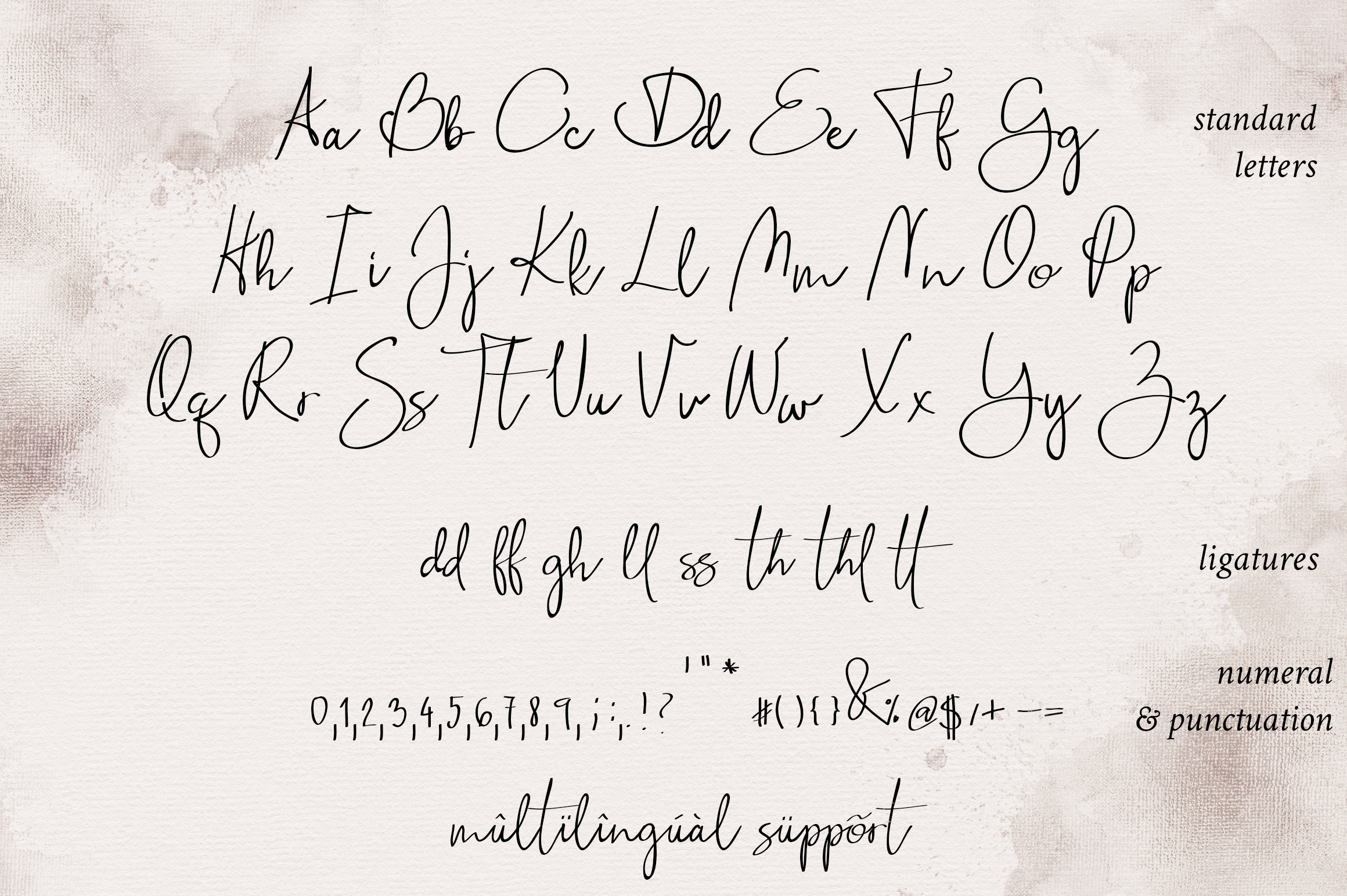 Stillness Script Font example image 6