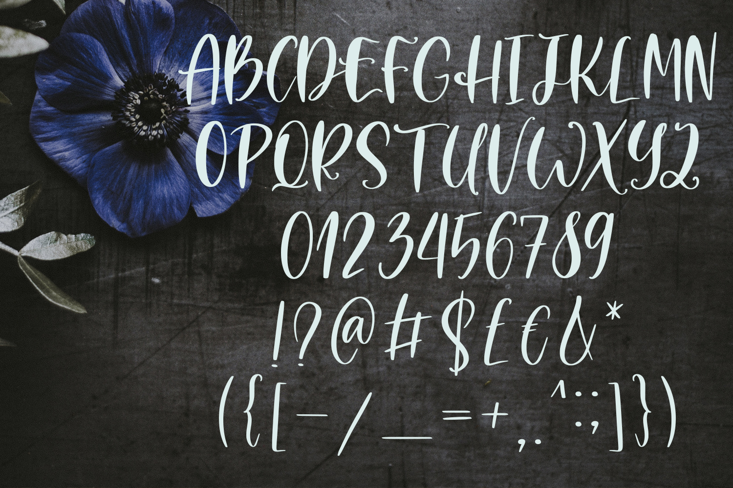 Monday Market Font Duo example image 5