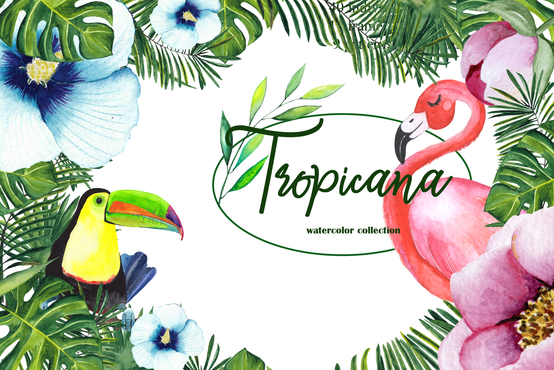 Tropical watercolor collection example image 1