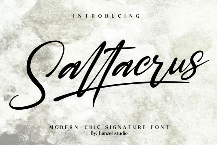 Saltacrus//Chic Signature Font example image 2