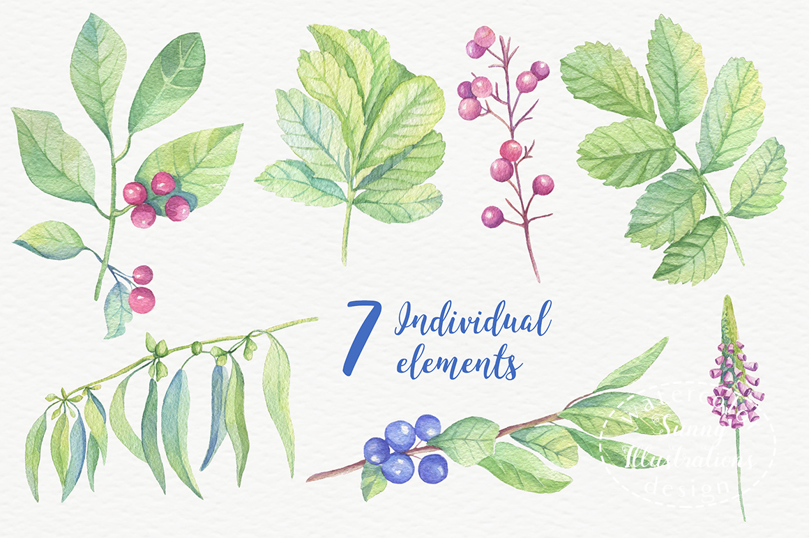Watercolor leaves, berries, flowers example image 3