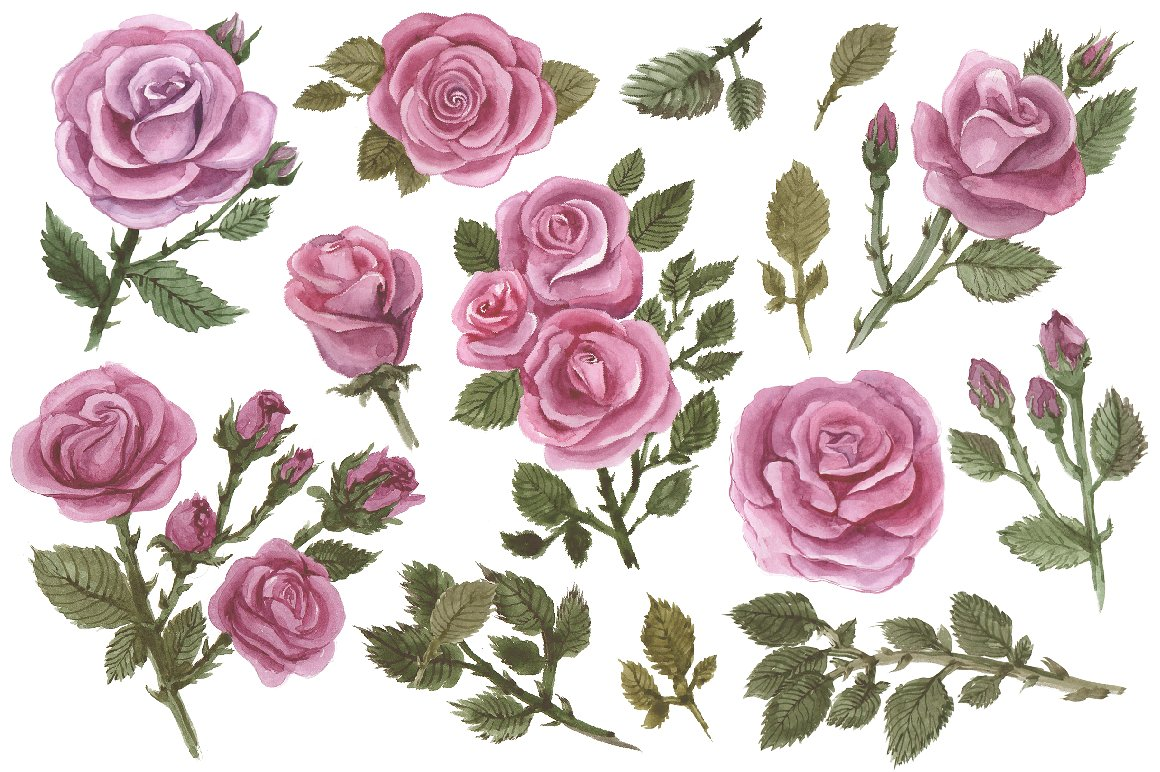Watercolor painted roses example image 2