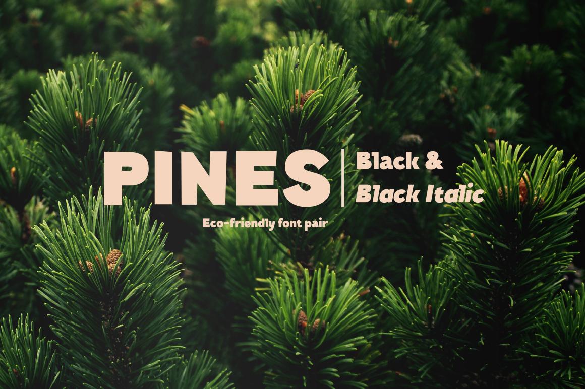 Pines Black & Pines Black Italic example image 1
