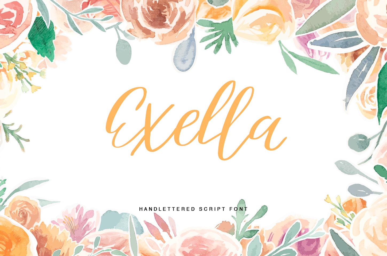 Exella example image 5