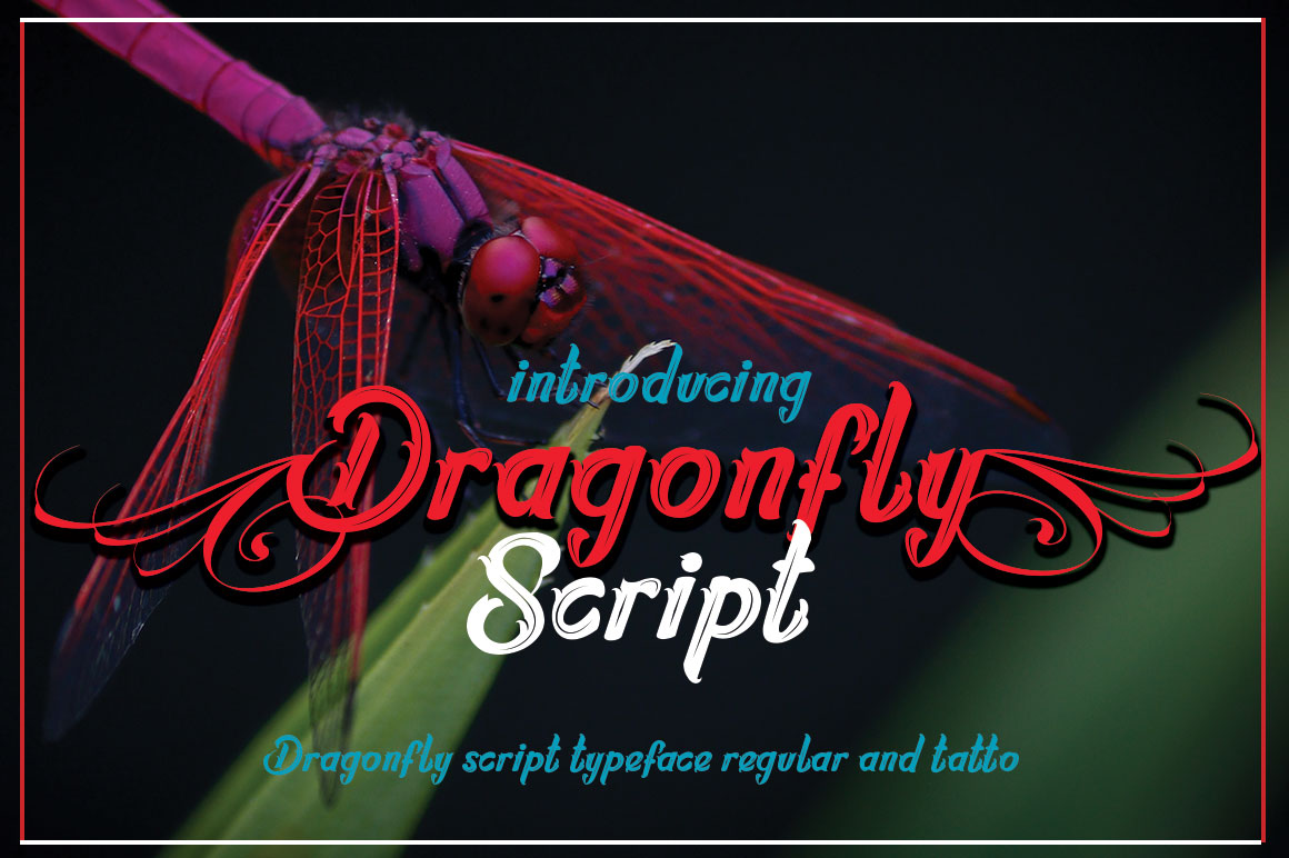 Dragonflayscript example image 2
