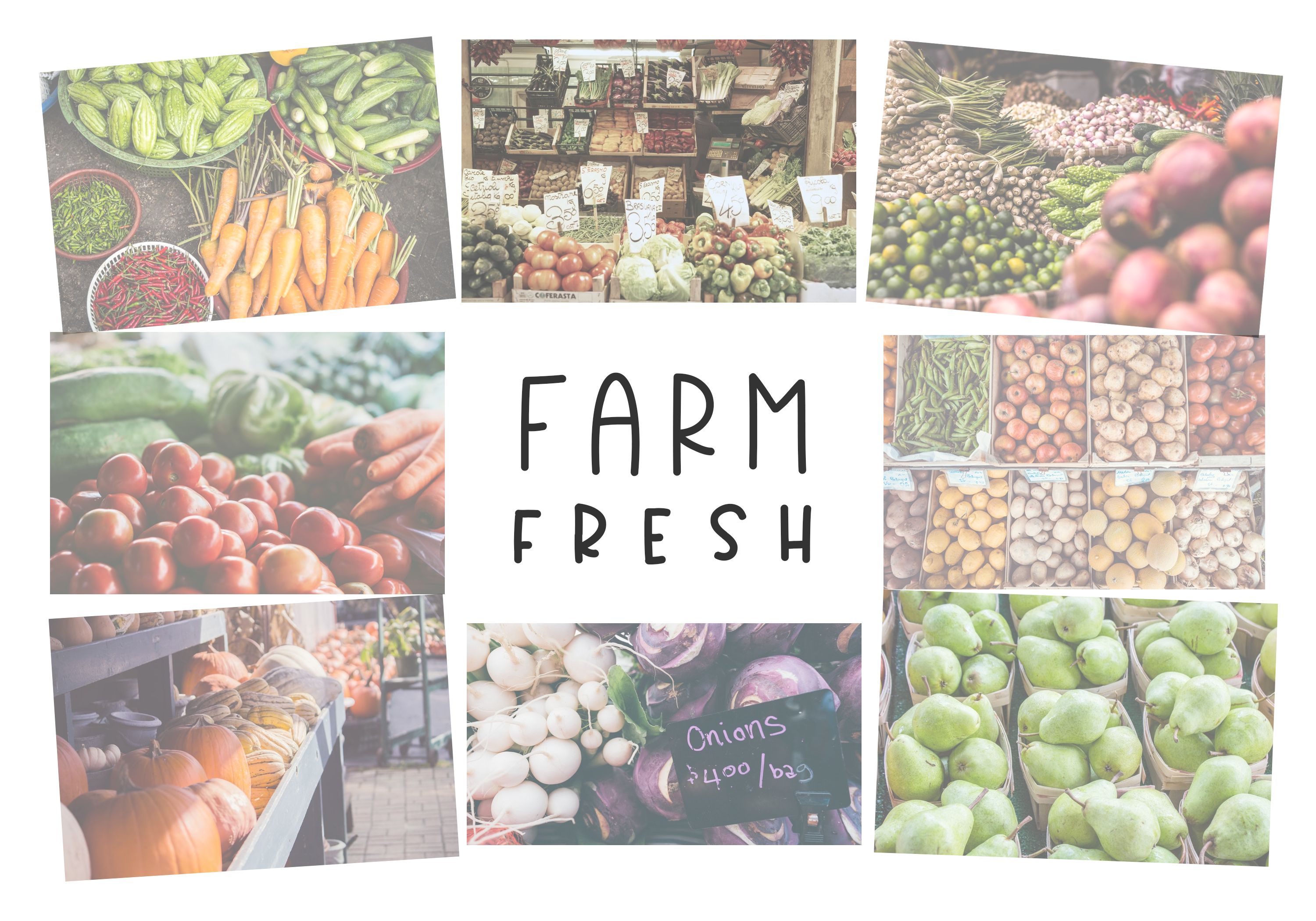 Country Market - A Handwritten Display Font example image 5