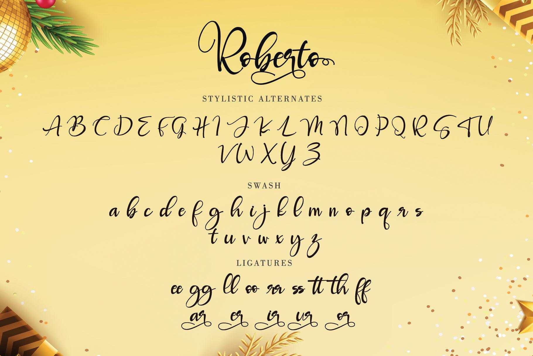 Roberto example image 10