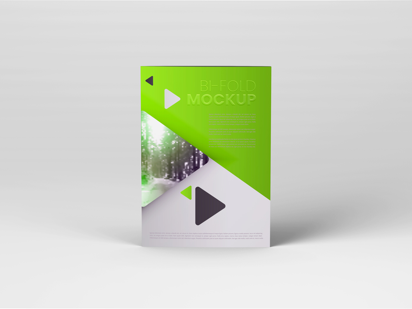 A4 Bifold Mockups V3 example image 7