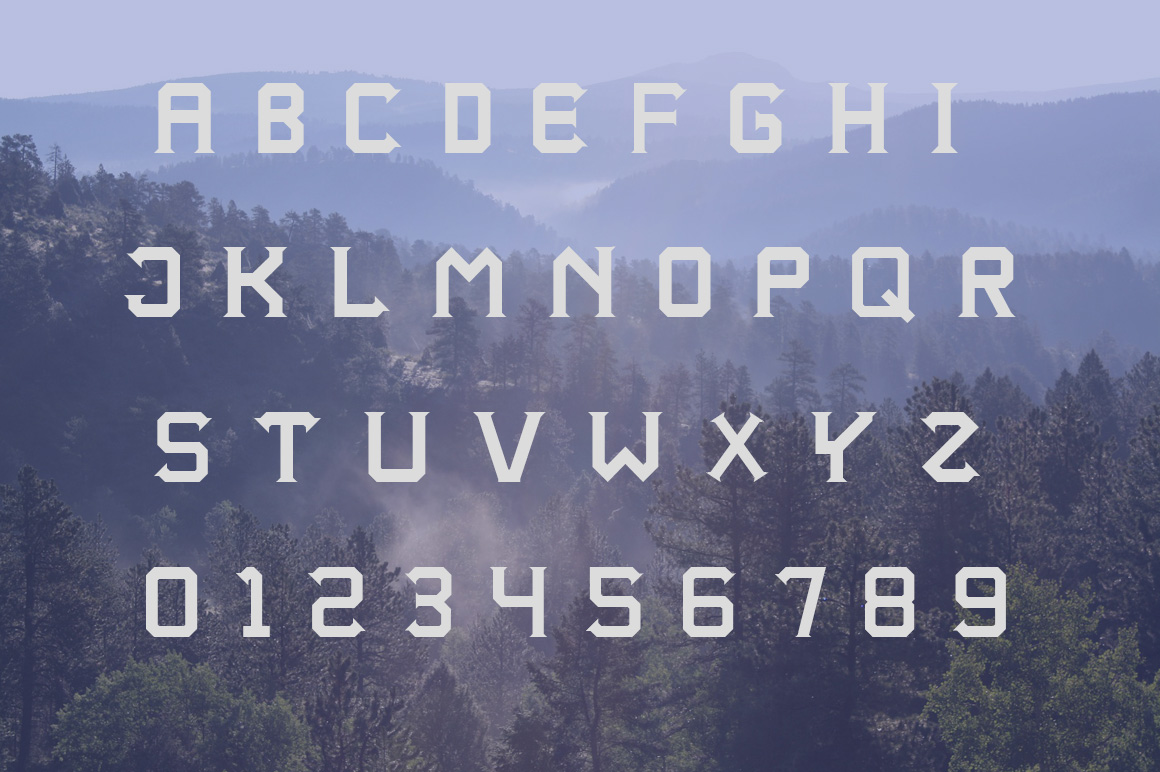 Altequera Typeface example image 4
