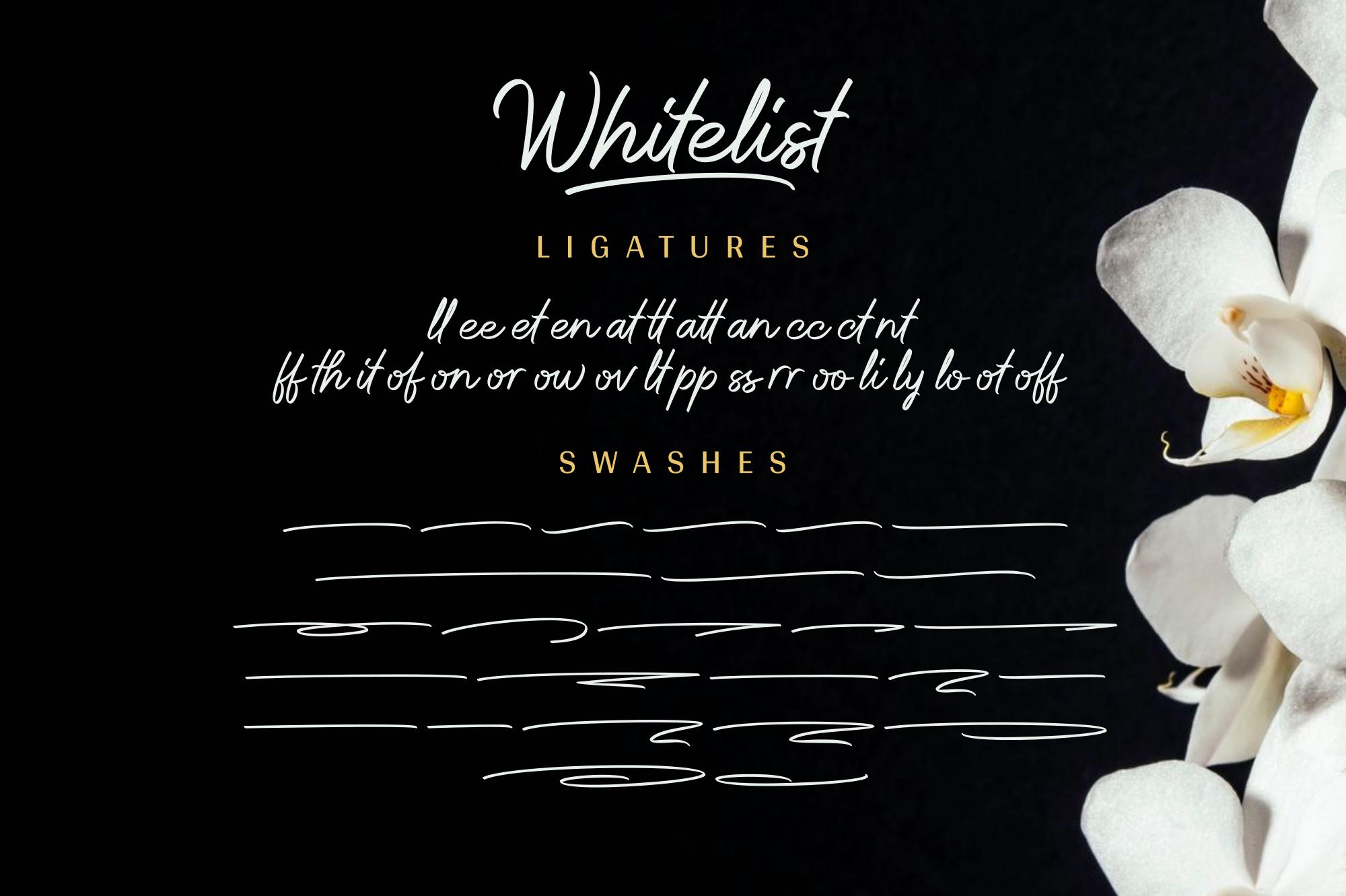 Whitelist example image 13