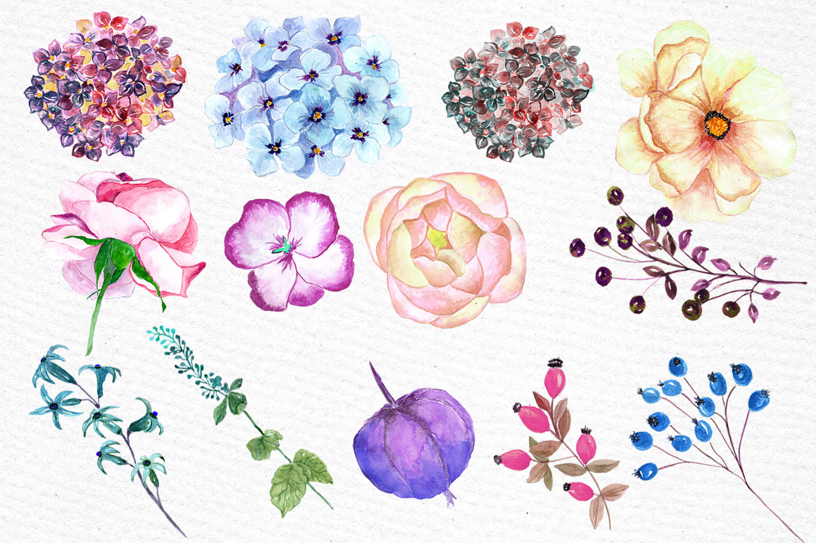 Watercolor hydrangea flowers clipart example image 2