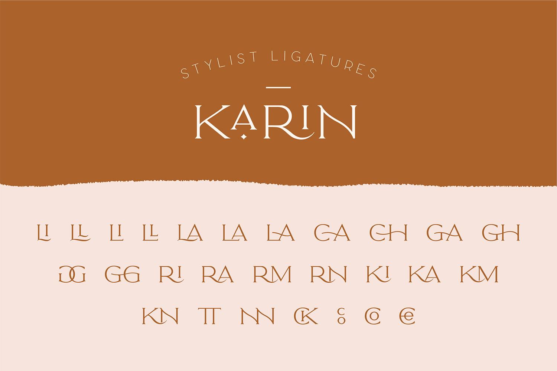 Elegant Karin - Fashion Stylish Typeface example image 24