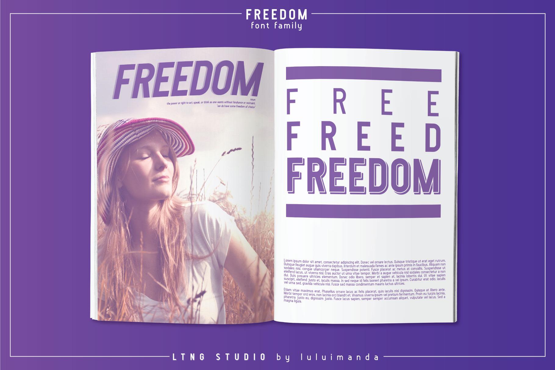 FREEDOM font family example image 10