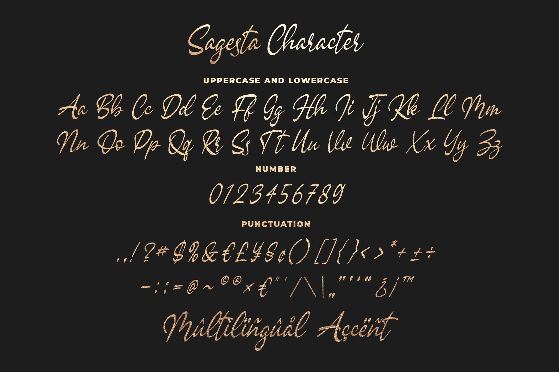 Sagesta - Luxury Script Font example image 6
