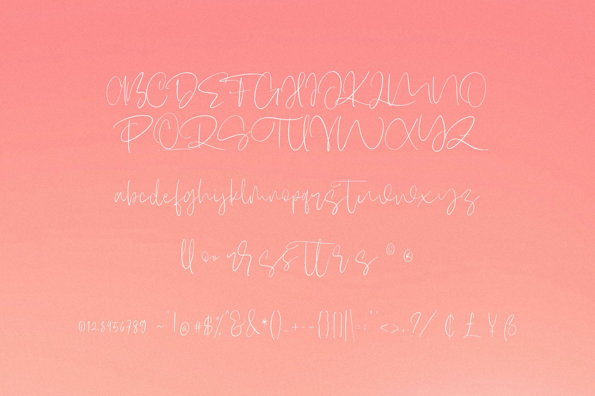 Claristta - Handwritten Brush Font example image 8