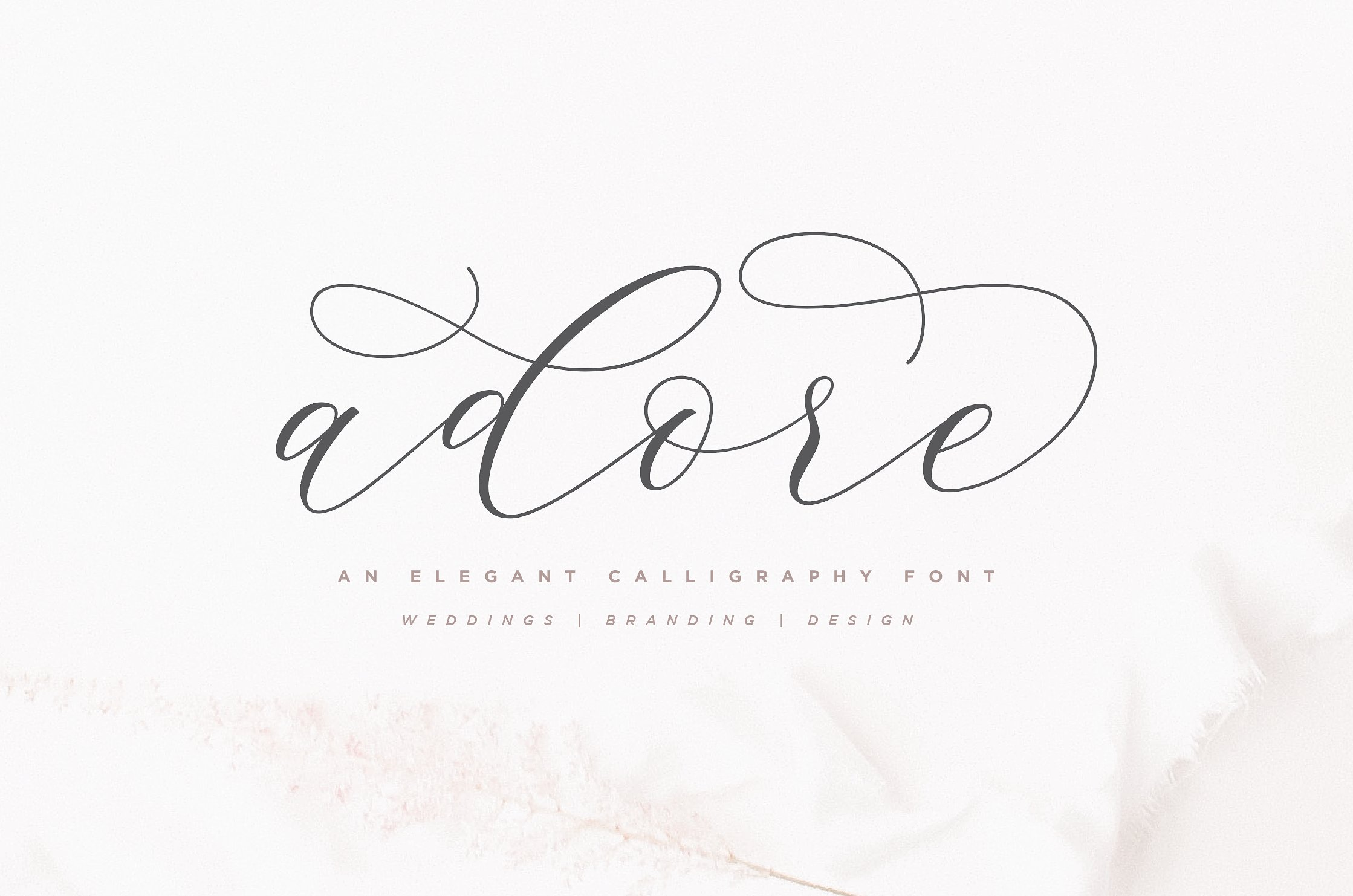 Adore Calligraphy Font example image 1