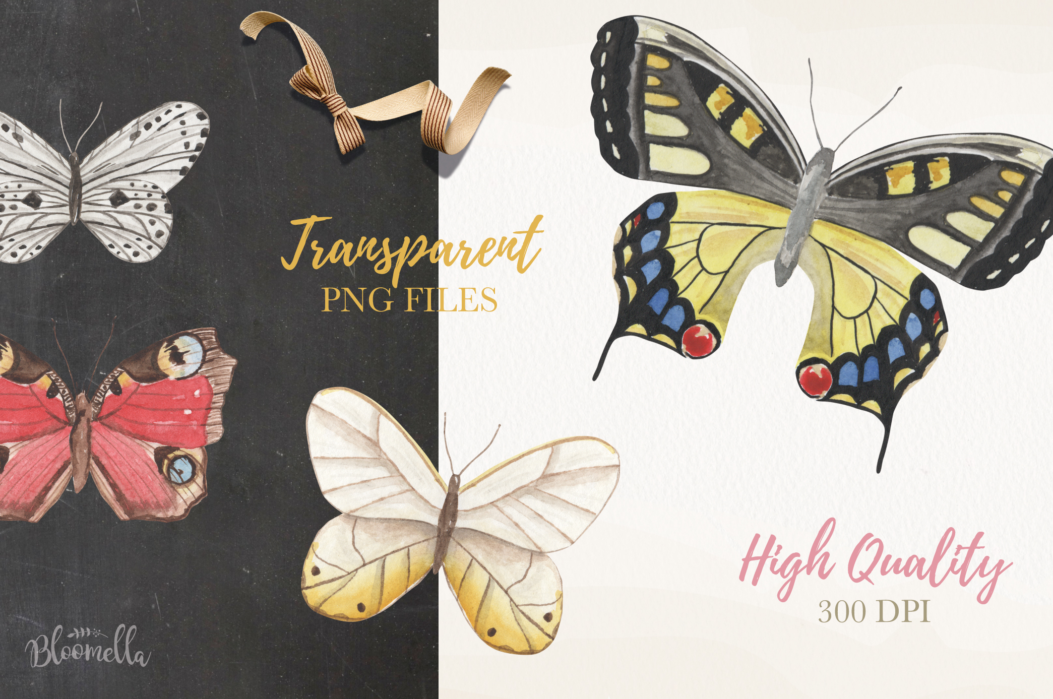 Butterfly Collection 12 Watercolor Clipart Elements Insect example image 5