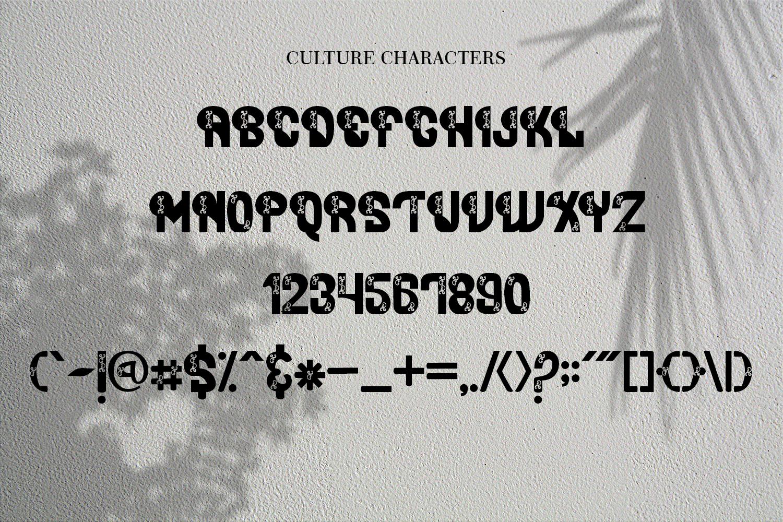 Mithana Font Duo example image 5