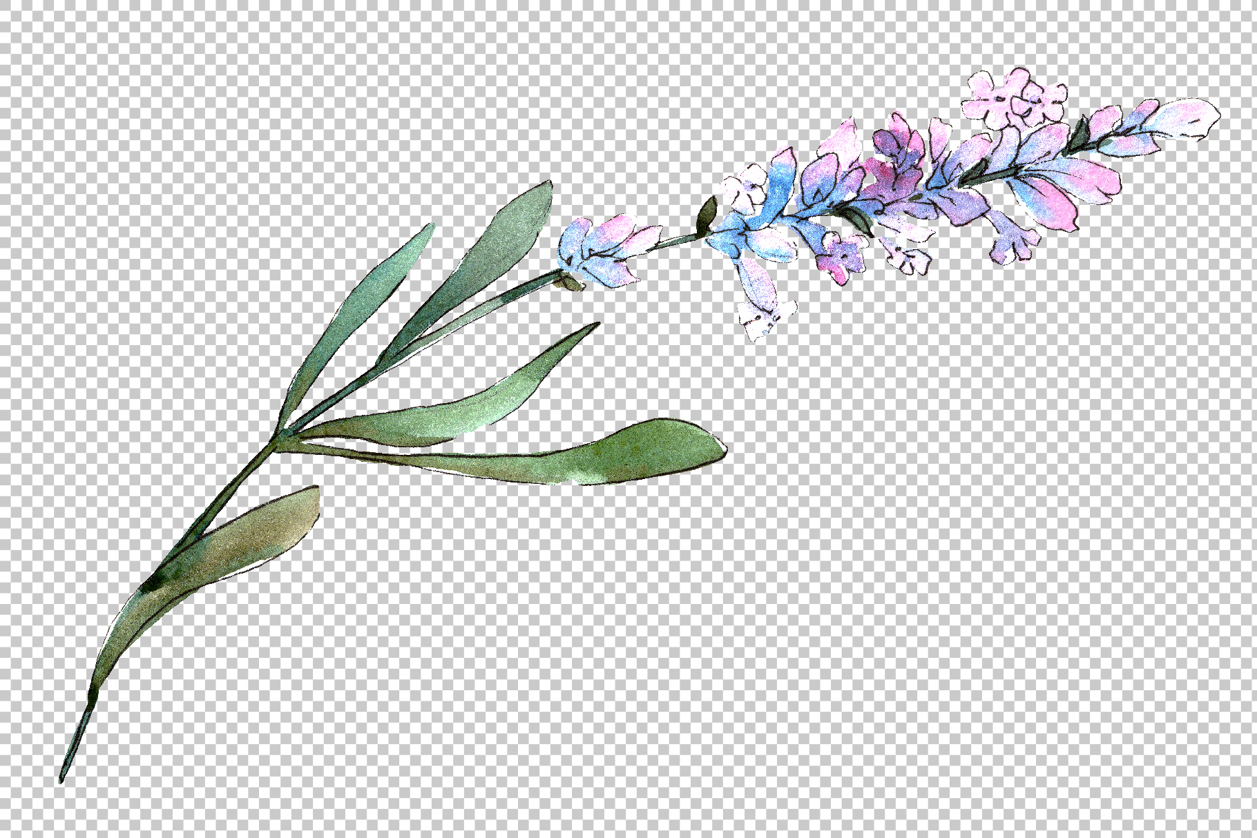 Bouquet of idyll lavender Watercolor png example image 3