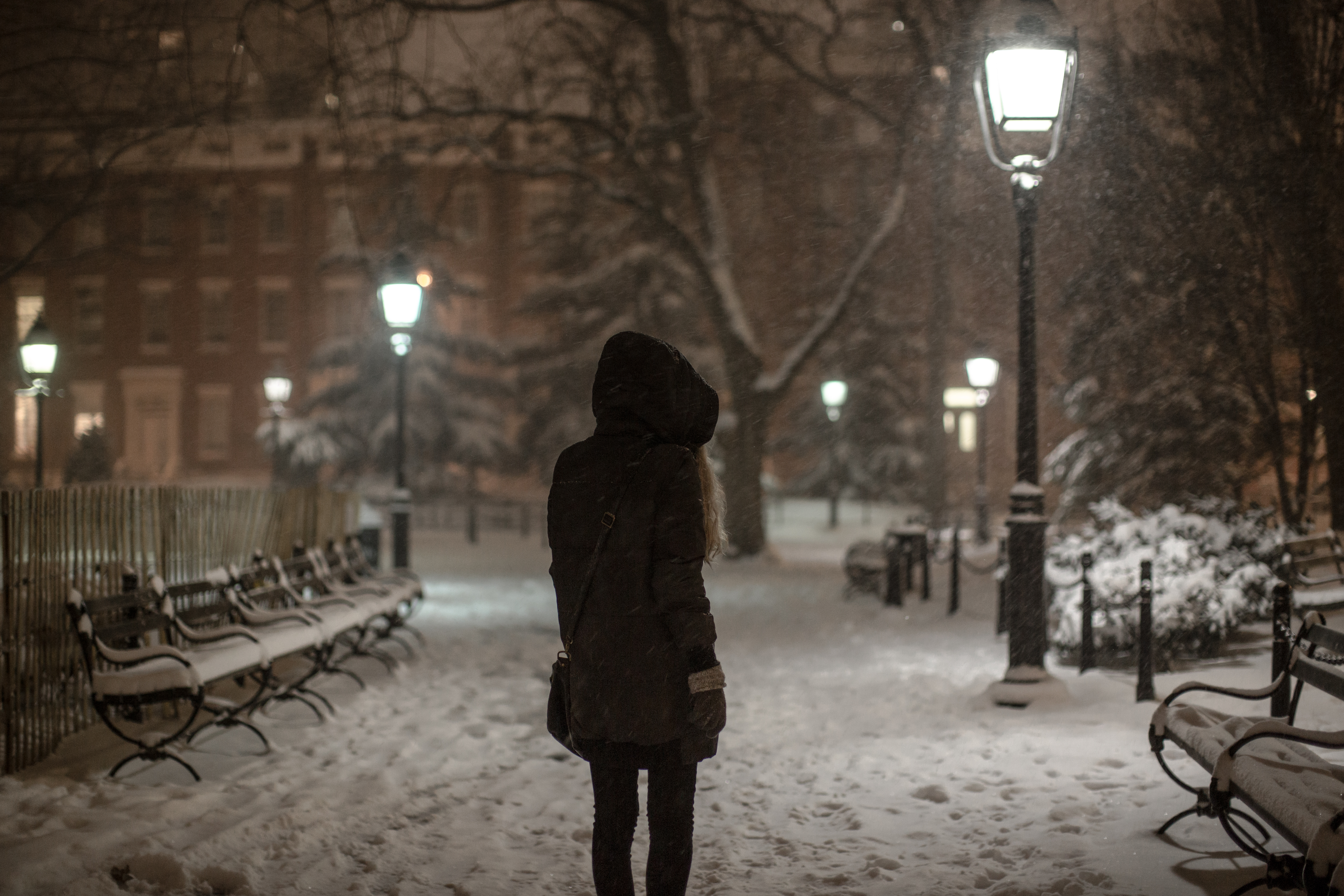 Girl on a winter day walking in Washington square park.	 example image 1