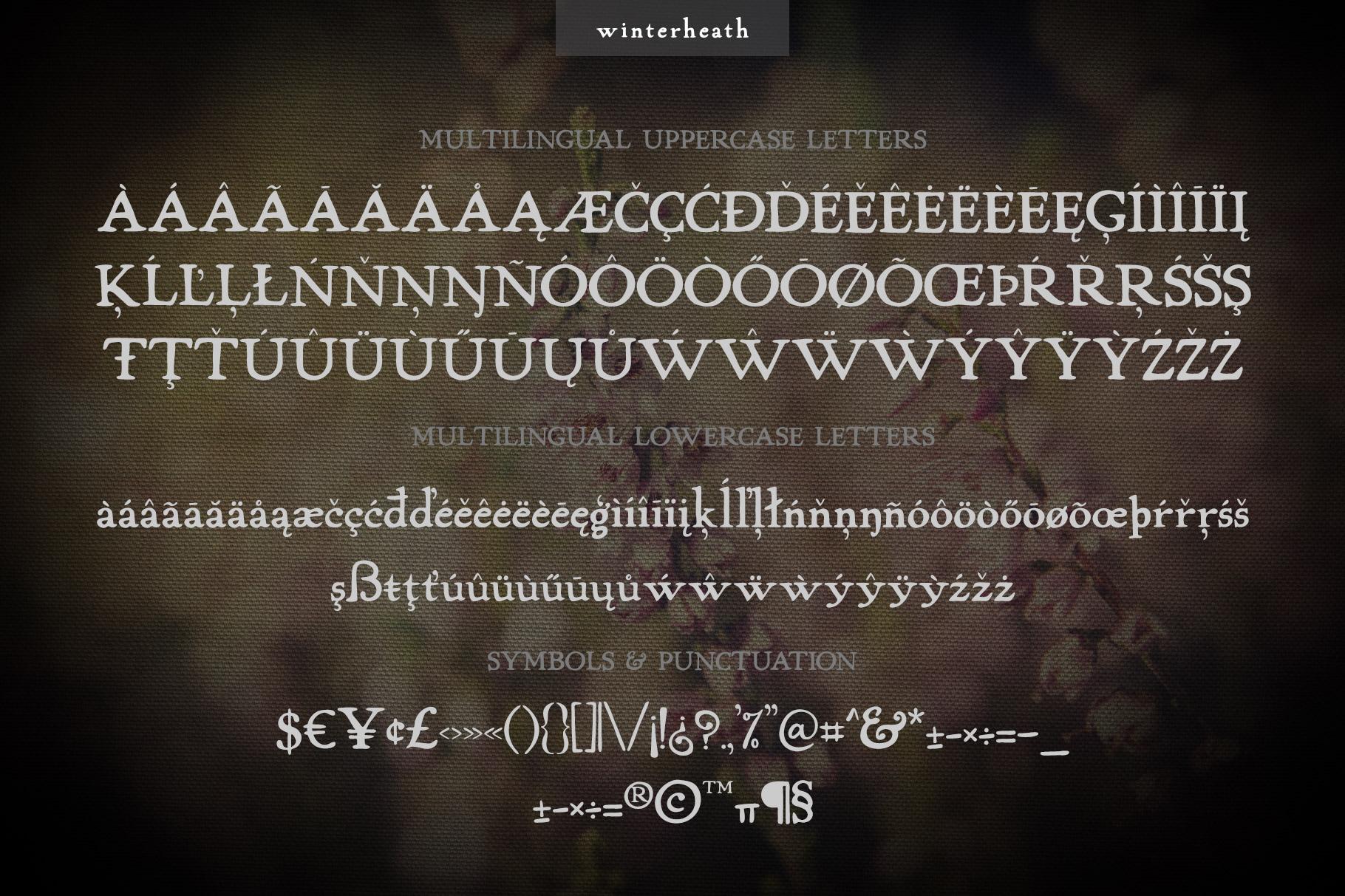 Winterheath Hand Drawn Serif Font example image 7