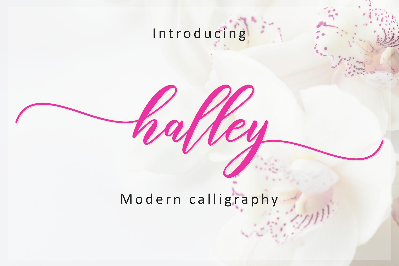 Halley Script example image 1