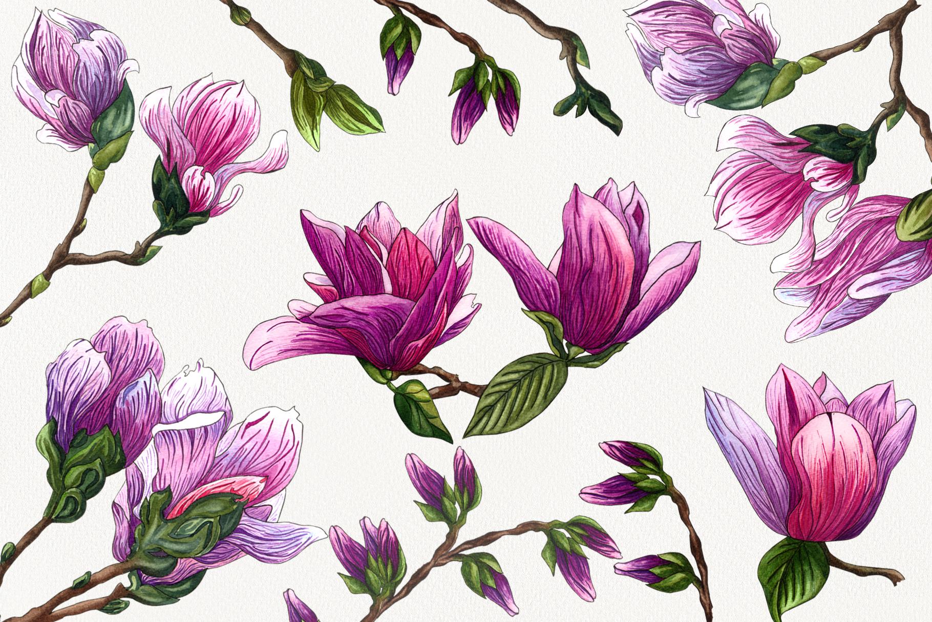Magnolia Bloom example image 3