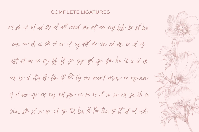 Whiskey Girl Signature Font example image 9