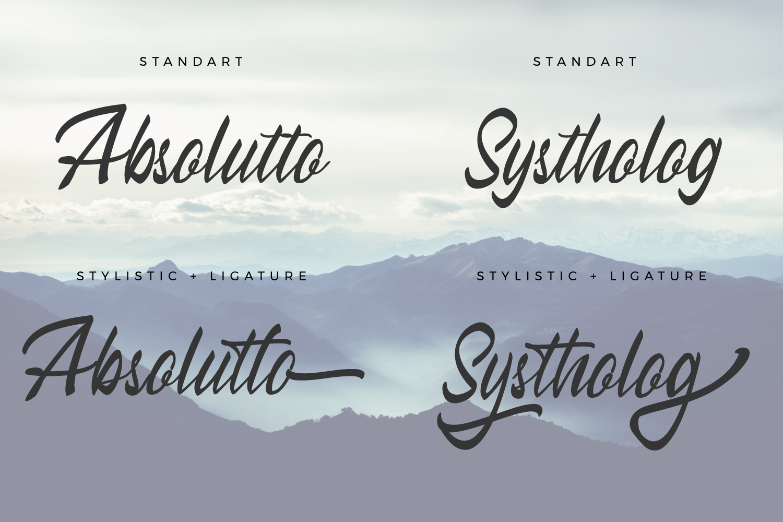Himallaya Script Font & Swash example image 5