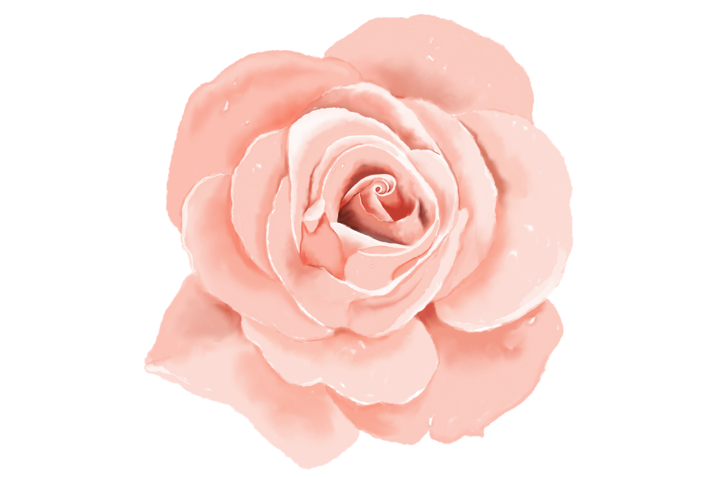6 Digital Watercolor Roses | Clip Art Illustrations PNG/JPEG example image 4