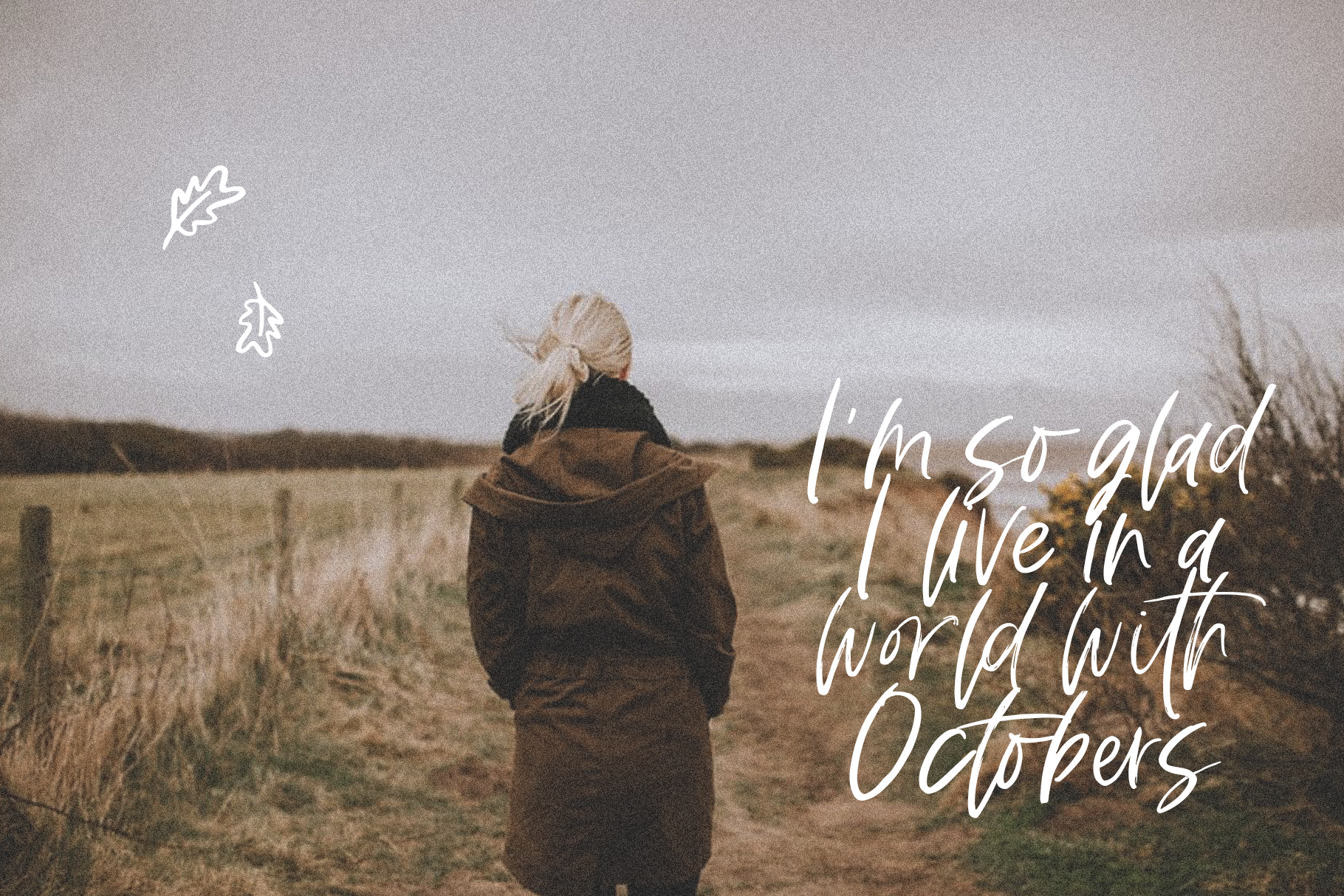Fall Harvest - A Handwritten Script Font with extras! example image 4