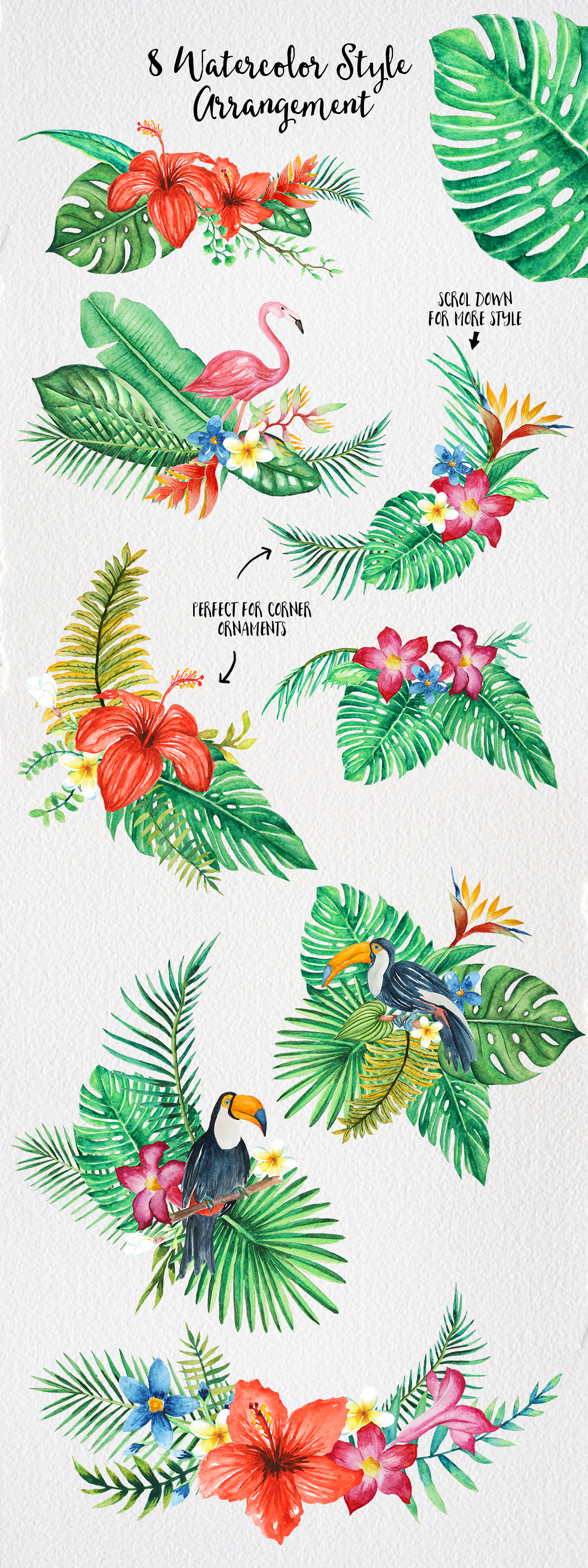 TROPICAL Watercolor clip art pack example image 5