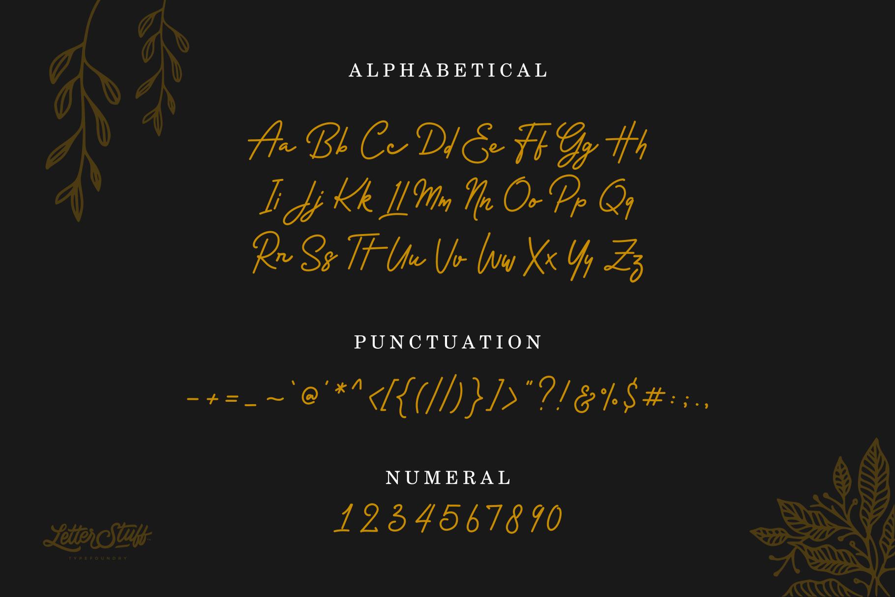 Rossela Signature Font & Extras example image 6
