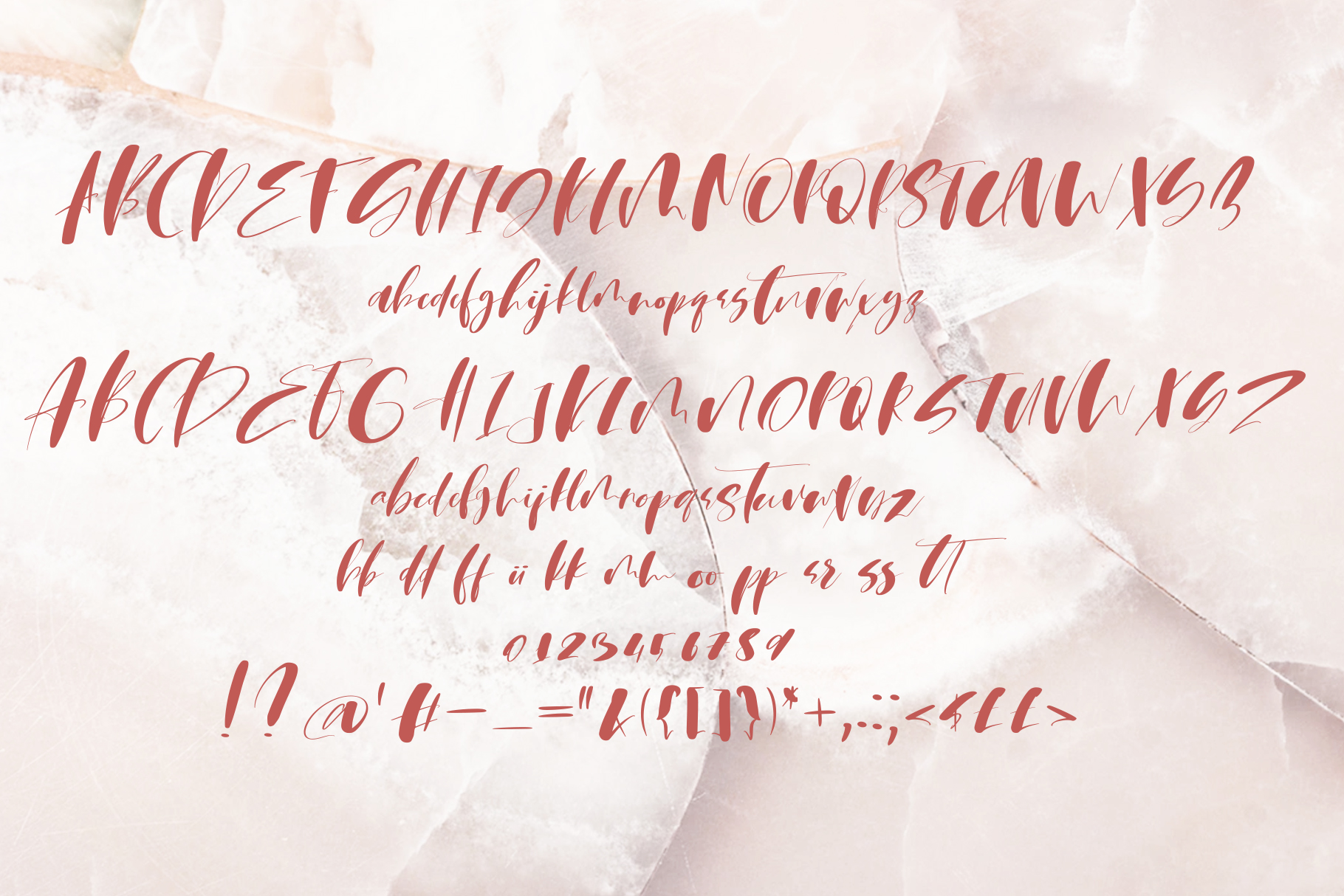 Martin Script Font example image 9