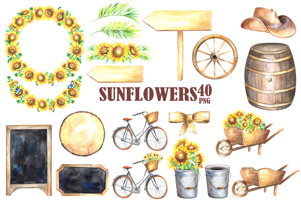 Sunflowers watercolor clipart example image 2