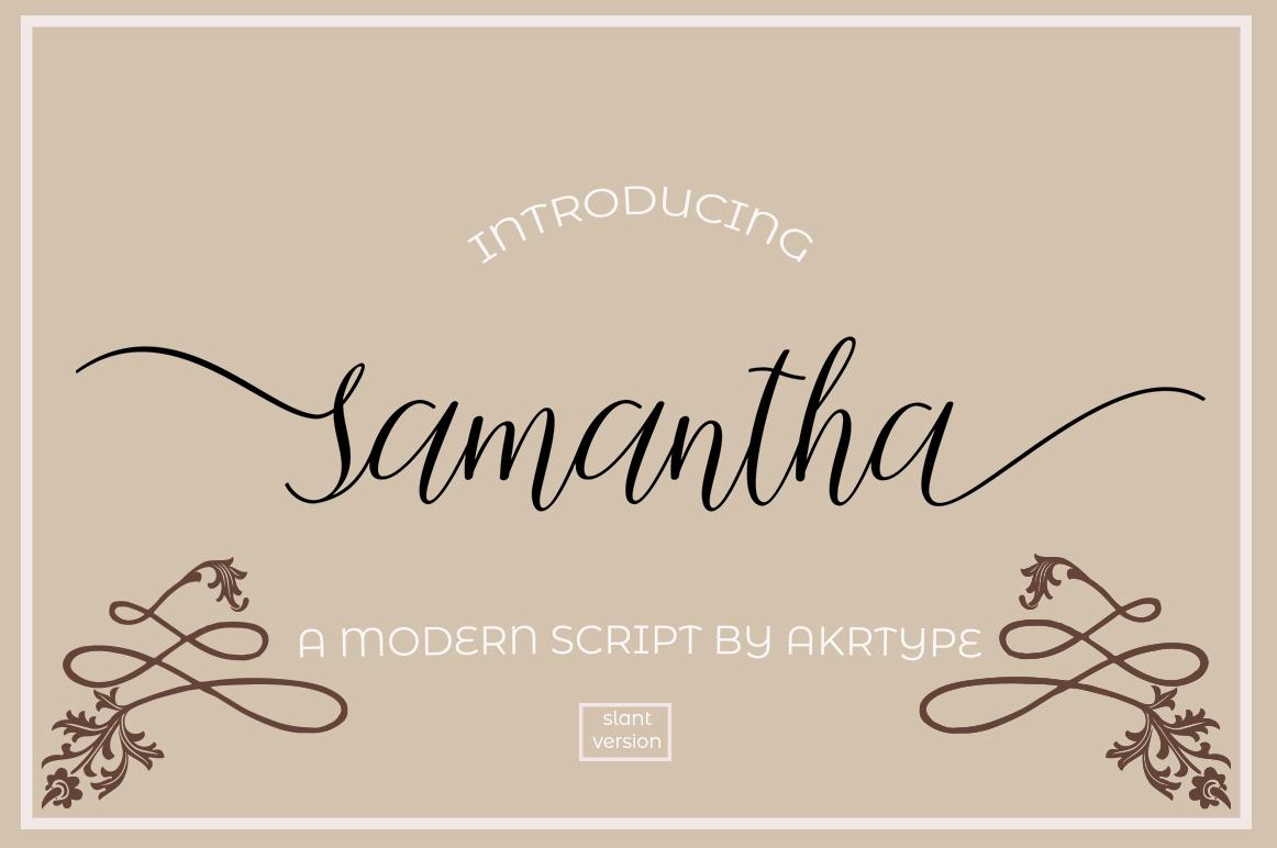 The Script Font Bundle example image 7