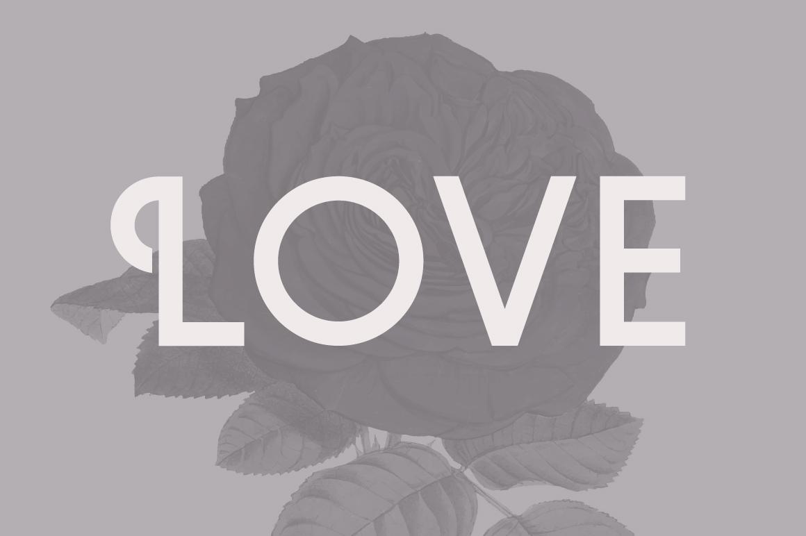 Violet | A Stylish Sans Serif example image 6