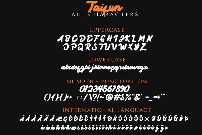 Taifun Brush Font example image 8