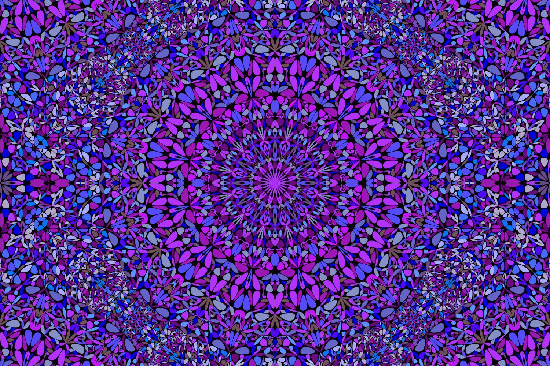 48 Seamless Floral Mandala Patterns example image 6