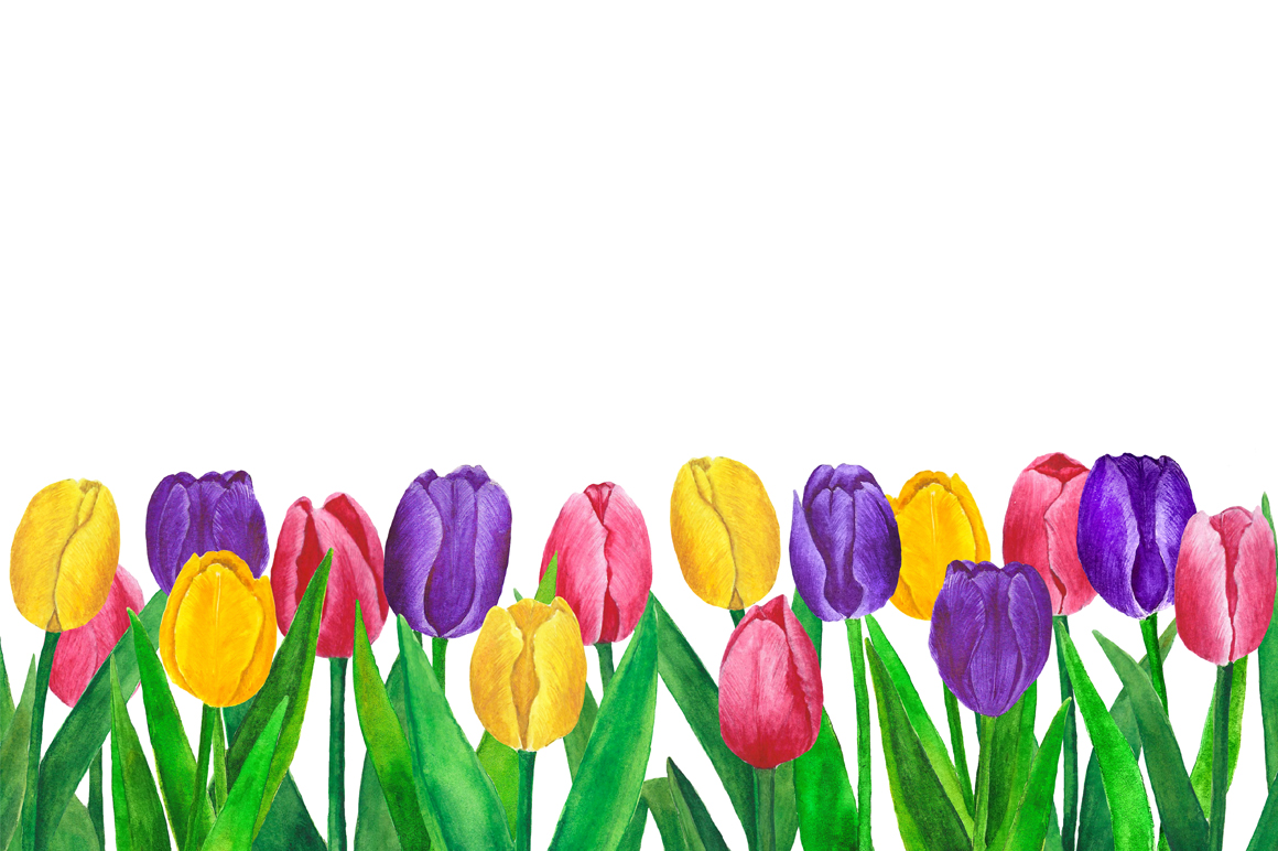 Flowers Tulips Watercolor example image 2