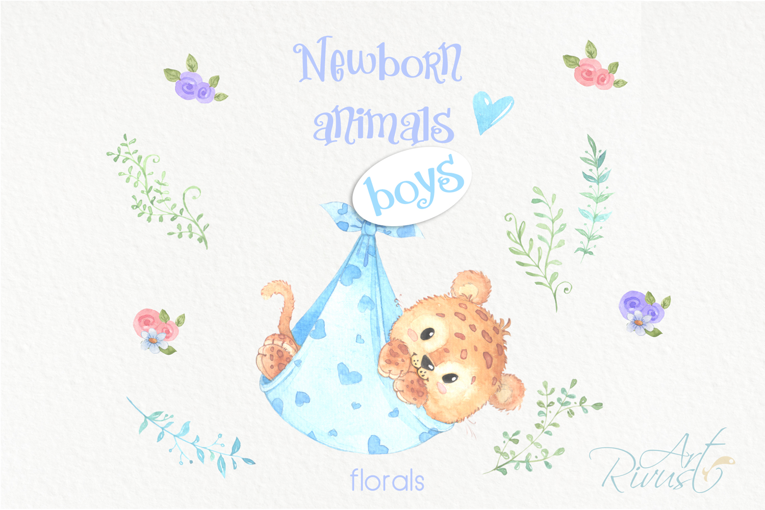 It's a boy Newborn animals clipart PNG download. African Saf example image 6
