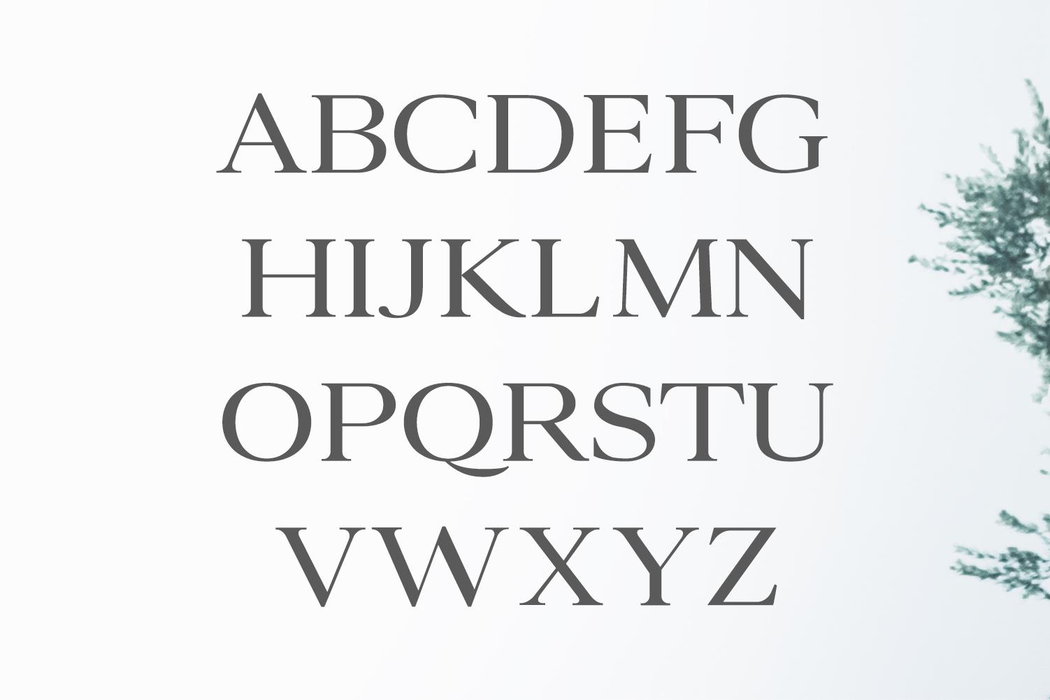 Ammar A Modern Serif Family example image 2